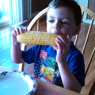 Corn Cob Cam